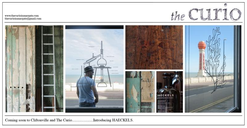 Curio Gazette Haeckels teaser